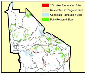 Priority areas for restoration after 20 years. Irvine Range Project