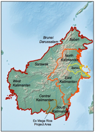 Borneo is the world's third largest island, and is located in South East Asia. Coloured outlines show the focal areas for our research