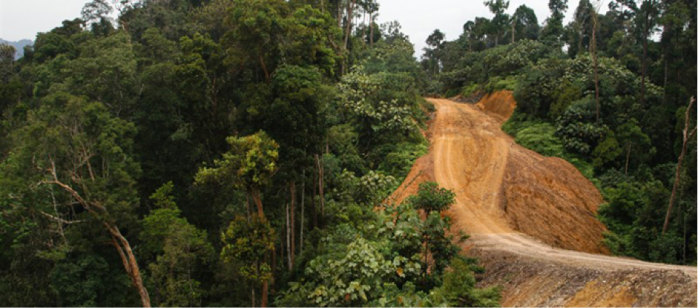 Roads and intensive logging can cause severe erosion and high flows of sediment to rivers, especially in mountainous terrain – leading to loss of ecosystem services such as freshwater and flood regulation. Some roads form vital connections for local people, but most are built for logging and coal transport. Photo: UNEP GRID-Arendal