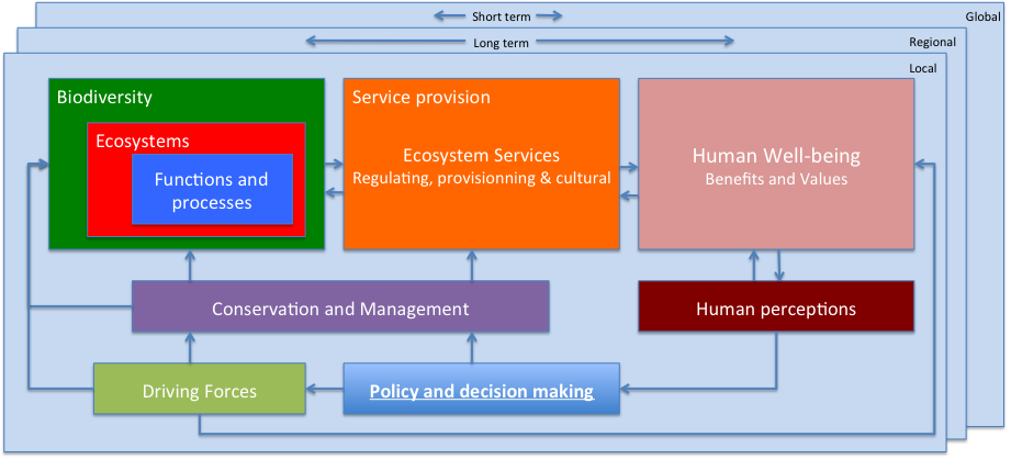Figure 1: Conceptual Framework for the conservation and management of biodiversity and ecosystem services.