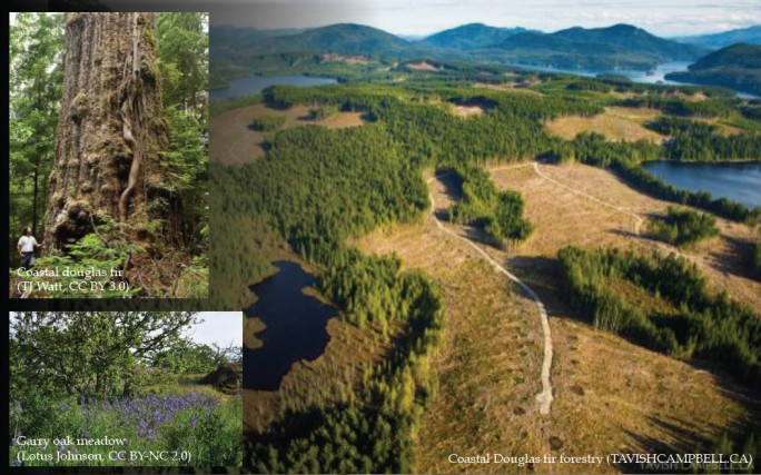 Theme_landmanagement_2